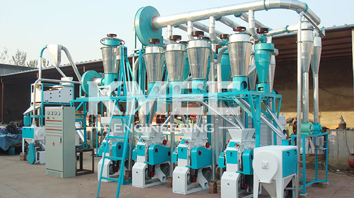 20tpd mini automatic flour plant