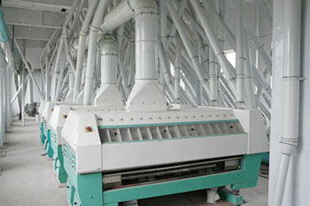 siftering system of 250tpd wheat flour mill