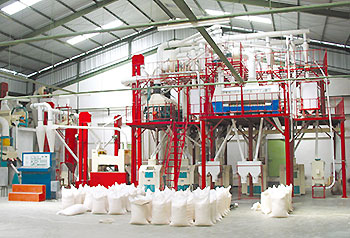 50tpd maize flour mill