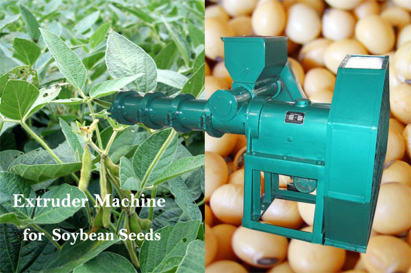 extrusion machine for soybean seeds