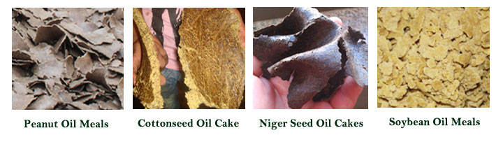 oil meals and oil cakes for different vegtable seeds and nuts