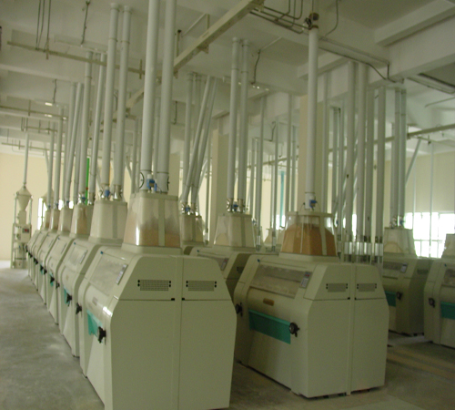 project of flour mill Flour mill projects established by kingman henan kingman m e complete plant co,ltd (kmec) deals principally in manufacturing and exporting complete plants and equipments of flour mill for grain, wheat, corn, rice.