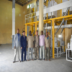 ethopia flour mill project