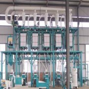 50 TPD Wheat Flour Processing Machinery