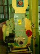 wood pellet mill project in US