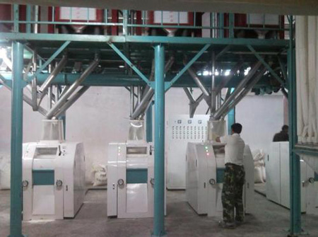 50T maize flour mill project in Kenya